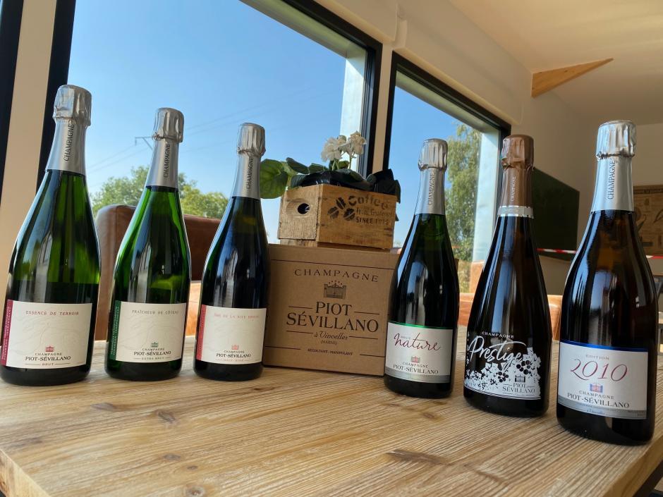découverte champagne piot sevillano